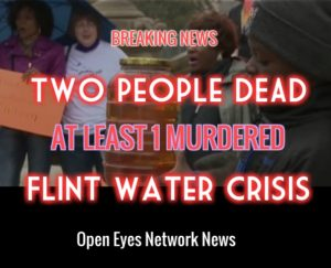 Flint Water Placard