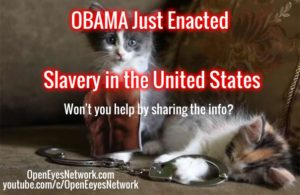 Obama Slavery Kittens
